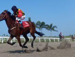 Kejurnas Pacuan Kuda 2021 Seri 2 Di Pangandaran, Berhadiah Total Ratusan Juta Rupiah